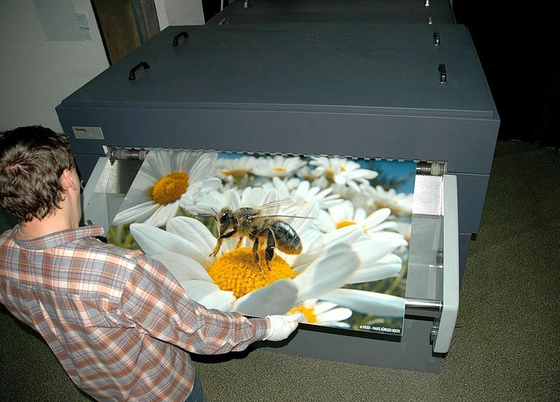 Дешевая печать фото в спб